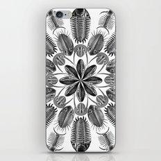 Trilobite and Fossil Mandala, Collage using Ernst Haeckel illustrations iPhone & iPod Skin