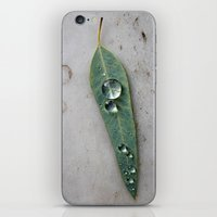 After The Rain iPhone & iPod Skin