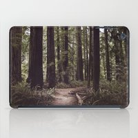 Redwood Forest iPad Case