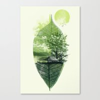 Live In Nature Canvas Print