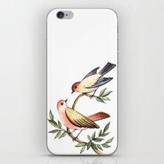 Bird lovers iPhone & iPod Skin