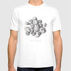 Fossils Mens Fitted Tee SMALL White
