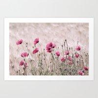 Poppy Pastell Pink Art Print