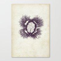Chestnutbrain Canvas Print