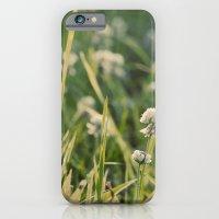 Dusk in the Field iPhone 6 Slim Case