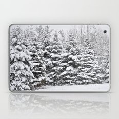 Winter Frosting Laptop & iPad Skin