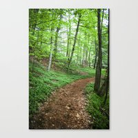 Into The Woods - Woodlan… Canvas Print