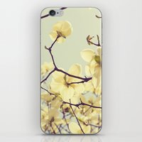 Magnolia Dream iPhone & iPod Skin