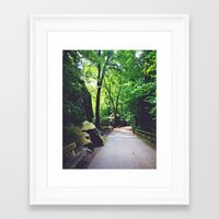 A Woodland Path Framed Art Print