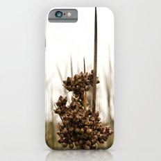 Sharp Rush iPhone 6s Slim Case