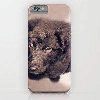 Star Struck iPhone 6 Slim Case