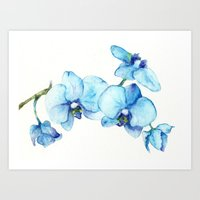 Blue Orchids - Watercolo… Art Print