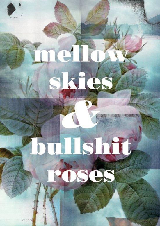 Mellow Skies Art Print