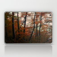 Autumn In The Woods 3 Laptop & iPad Skin
