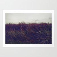 Autumn Field V Art Print