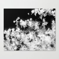 Of A Snowflake Canvas Print