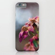 Dried Roses iPhone 6 Slim Case