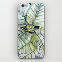 Poinsettia Watercolors iPhone & iPod Skin