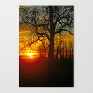 Sunset By The Rhine Canvas Print