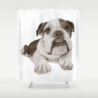 A Bulldog Puppy :: Brindle  Shower Curtain