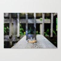 multi bird Canvas Print