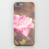 iPhone & iPod Case featuring A Rose By Any Other Name... by Dena Brender Photography