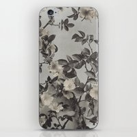 Vintage Hand Colored Dog… iPhone & iPod Skin