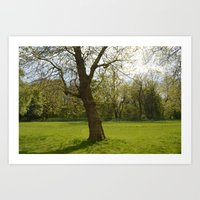 sefton park part 1 Art Print