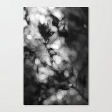 Faded Streams  Canvas Print