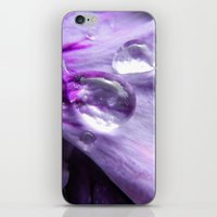 Perfection in Purple iPhone & iPod Skin