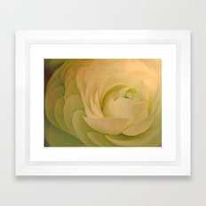 Petal Framed Art Print