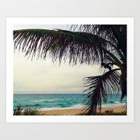 Sea And Palm  Art Print