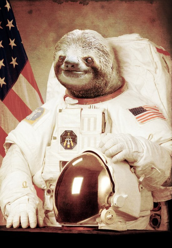 Sloth Astronaut Art Print