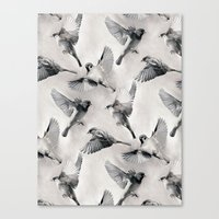 Sparrow Flight - monochrome Canvas Print