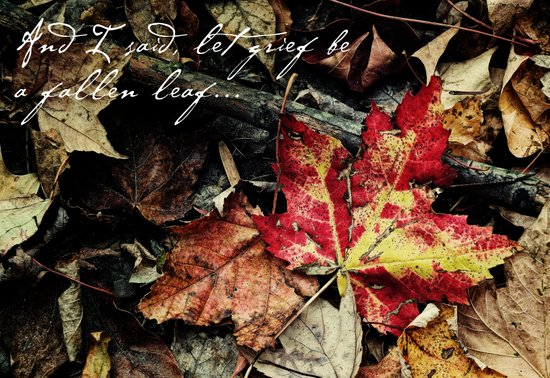Grief be a fallen leaf Art Print