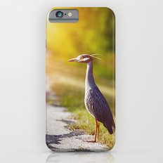 Night Heron Waiting for His Ride iPhone 6 Slim Case