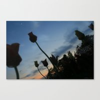 Flowers on the Moon Canvas Print