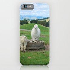 Alpaca iPhone 6 Slim Case
