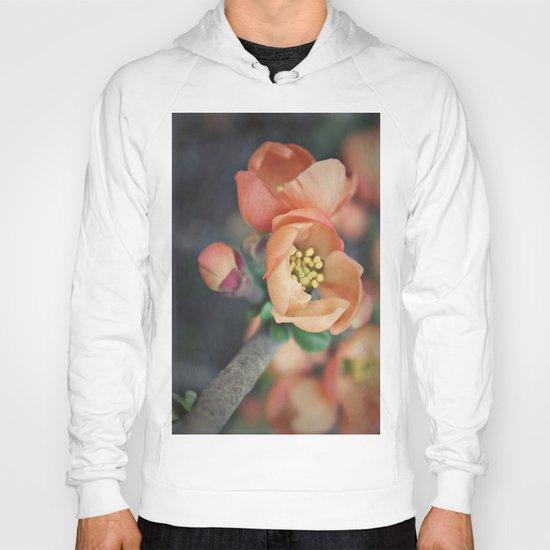 Orange Blossoms {2} Hoody