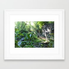 Wilderness Solitude Framed Art Print