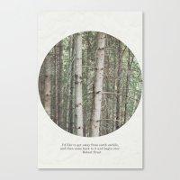 robert frost's birch trees Canvas Print