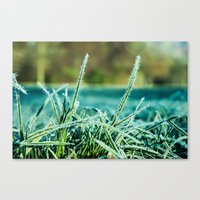 On A Cold And Sunny Morn… Canvas Print