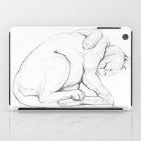 Cat II   /  Chat II   /  Gato II iPad Case