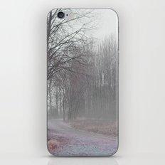 Walk in the Foggy Morning iPhone & iPod Skin