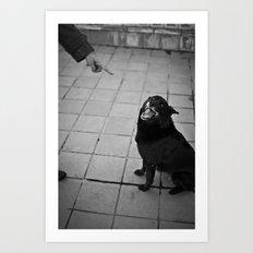 Undisciplined Dog Art Print