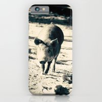 iPhone & iPod Case featuring Some Pig by Beth - Paper Angels Photography