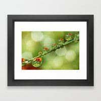 Autumn Dew Drops Framed Art Print