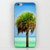 Stately Palm iPhone & iPod Skin