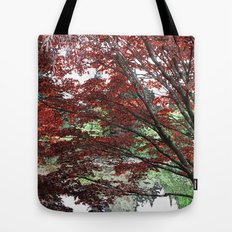 Red Japanese maple tree in Van Dusen Garden, Vancouver, BC, Canada. Floral nature photography. Tote Bag