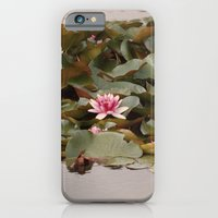 Water Lilies iPhone 6 Slim Case